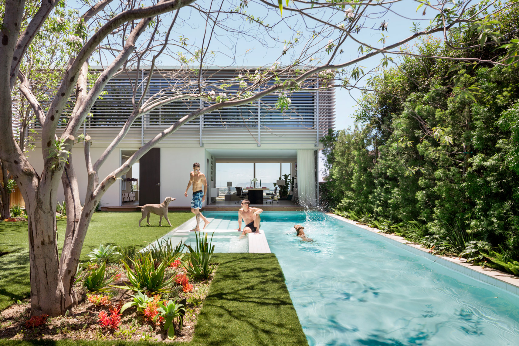 Pool, Steven Harris, San Diego, Town and Country, Modern Architecture